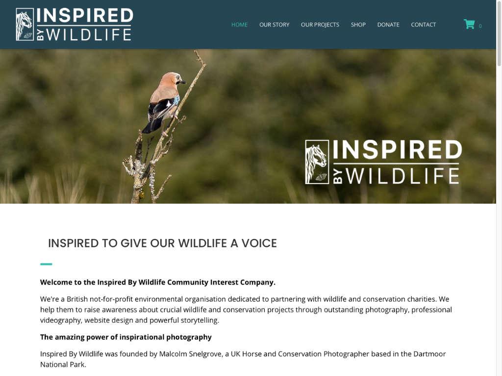 Inspired-By-Wildlife-03_big