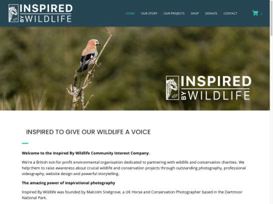 Inspired-By-Wildlife-03_small